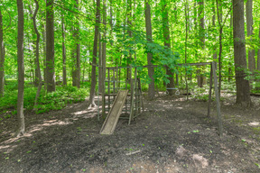 Play Structure in Wooded Area