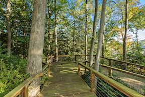 Private Boardwalk Leading to Dock