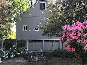 Rhododendrons Blooming in front of Garage / Barn